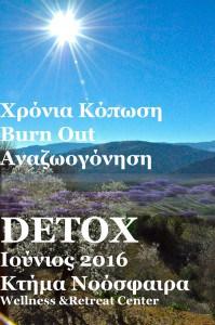 sun_detoxDSC1032forweb